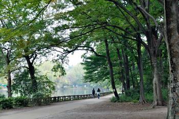 石神井公園.jpg